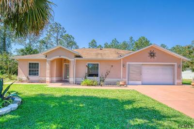 Palm Coast Single Family Home For Sale: 37 White House Dr