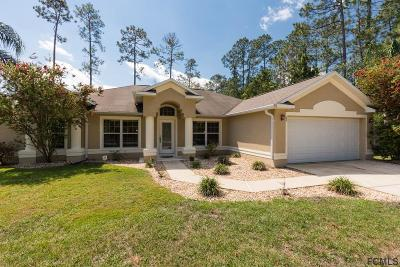 Palm Coast Single Family Home For Sale: 63 Eric Drive