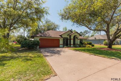 Palm Coast Single Family Home For Sale: 34 Ranwood Ln