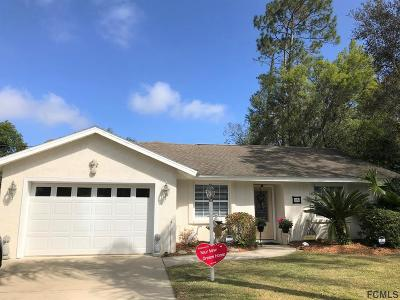 Palm Coast Single Family Home For Sale: 25 Welling Lane