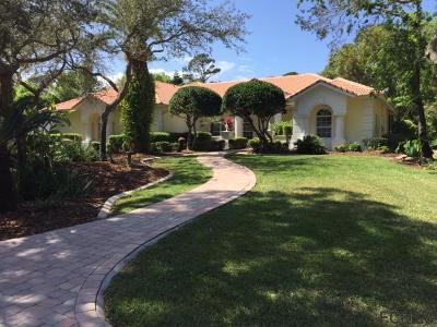 Palm Coast Single Family Home For Sale: 20 Rue Renoir