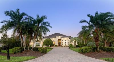 Palm Coast Single Family Home For Sale: 135 Island Estates Pkwy