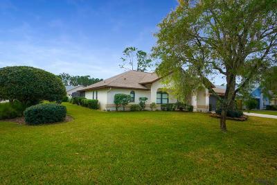 Palm Coast Single Family Home For Sale: 1 Washton Place