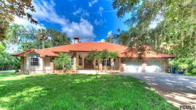 Flagler Beach FL Single Family Home For Sale: $499,900