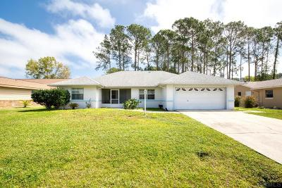 Palm Coast Single Family Home For Sale: 34 Boston Ln