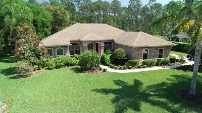 Ormond Beach Single Family Home For Sale: 1029 Hampstead Lane
