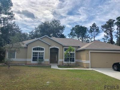 Palm Coast Single Family Home For Sale: 19 Palmer Lane