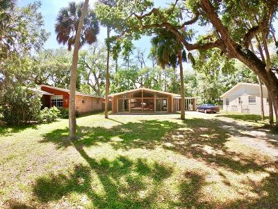 Flagler Beach Single Family Home For Sale: 340 Palm Dr