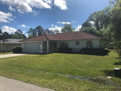 Palm Coast Single Family Home For Sale: 97 Pheasant Drive