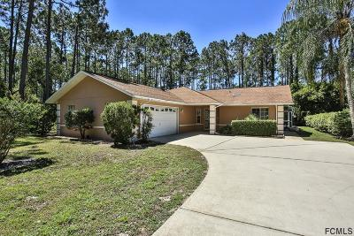 Palm Coast Single Family Home For Sale: 198 Boulder Rock Drive