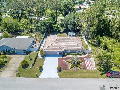 Palm Coast Single Family Home For Sale: 40 Pennypacker Ln
