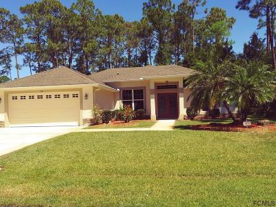 Palm Coast Single Family Home For Sale: 67 Point Of Woods Dr