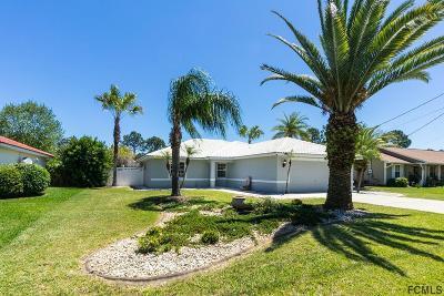 Palm Coast Single Family Home For Sale: 205 Pritchard Dr