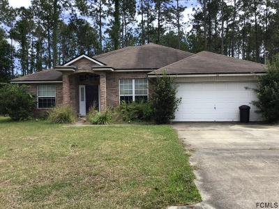Palm Coast Single Family Home For Sale: 60 Ryder Drive