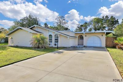 Palm Coast Single Family Home For Sale: 4 Fairview Lane