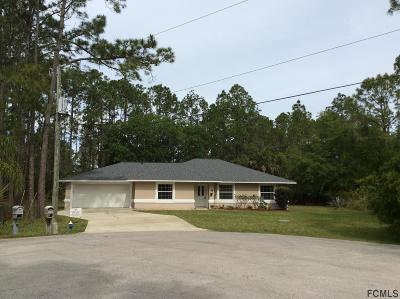 Palm Coast Single Family Home For Sale: 18 Smyrna Court
