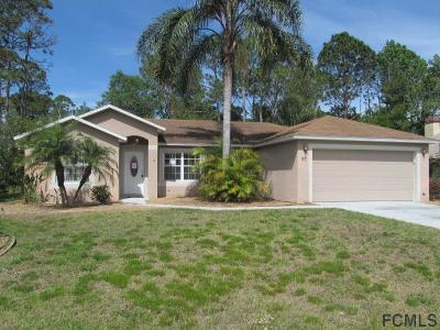 Palm Coast Single Family Home For Sale: 27 Pennsylvania Ln