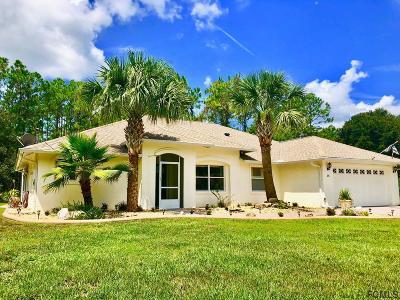 Palm Coast Single Family Home For Sale: 10 Waldorf Pl