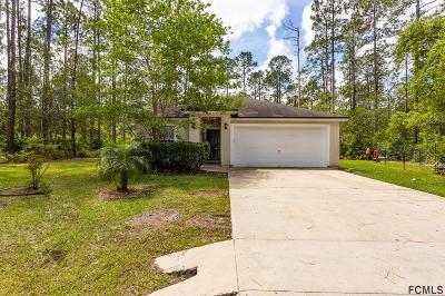 Palm Coast Single Family Home For Sale: 9 Riddle Pl