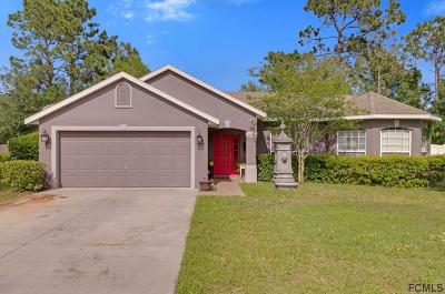 Palm Coast Single Family Home For Sale: 11 Birchview Pl
