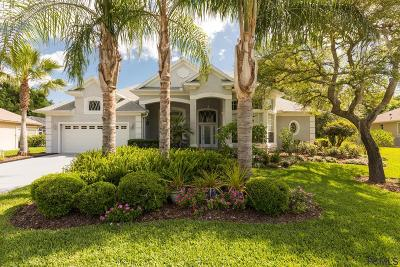 Ormond Beach Single Family Home For Sale: 3741 Mayo Circle
