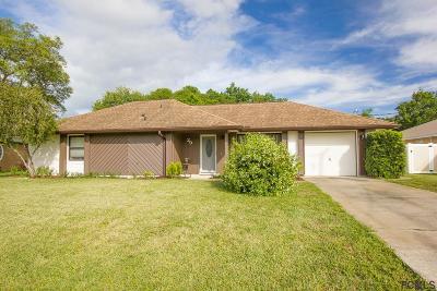Palm Coast Single Family Home For Sale: 29 Forge Lane