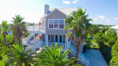 Palm Coast Single Family Home For Sale: 52 Seascape Drive