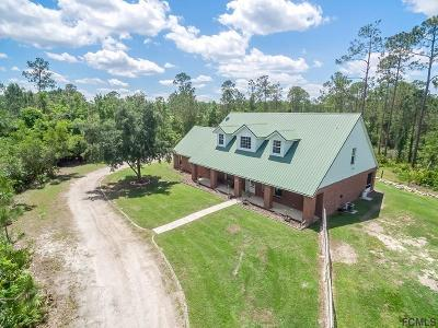 Ormond Beach Single Family Home For Sale: 234 Rodeo Road