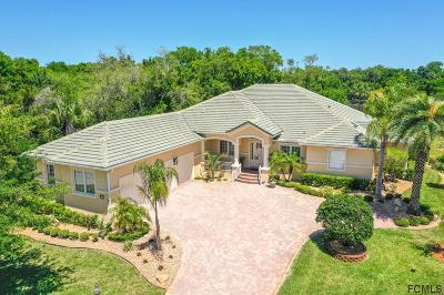 Palm Coast Single Family Home For Sale: 1 Devin Ct