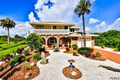 Flagler Beach Single Family Home For Sale: 1935 N Central Ave N