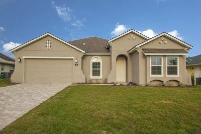Palm Coast Single Family Home For Sale: 23 Cormorant Court
