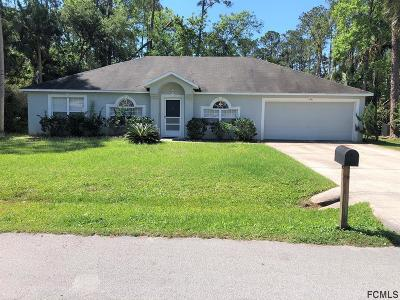 Palm Coast Single Family Home For Sale: 20 Poinciana Lane