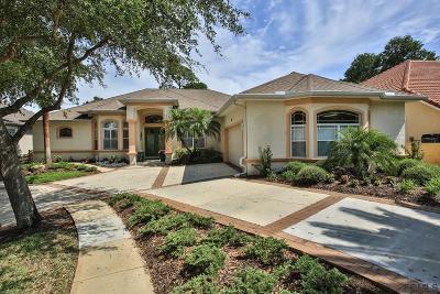 Palm Coast Single Family Home For Sale: 35 Eastlake Drive