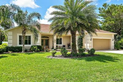 Palm Coast Single Family Home For Sale: 60 Fanshawe Lane