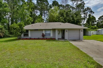 Palm Coast Single Family Home For Sale: 5 Birchview Pl