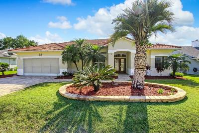 Palm Coast Single Family Home For Sale: 13 Clermont Court