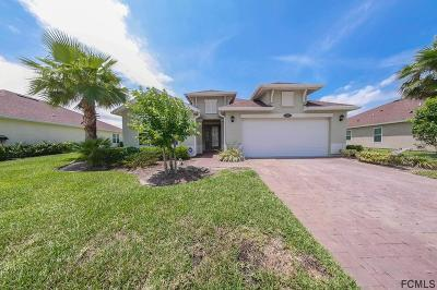 Palm Coast Single Family Home For Sale: 38 Auberry Dr