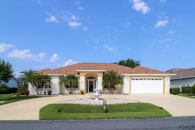 Palm Harbor Single Family Home For Sale: 23 Cloverdale Ct N