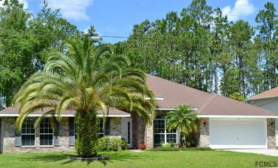 Palm Coast Single Family Home For Sale: 69 Robinson Drive