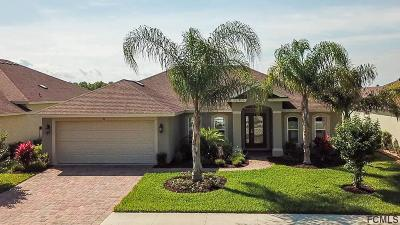 Palm Coast Single Family Home For Sale: 26 Arena Lake Dr