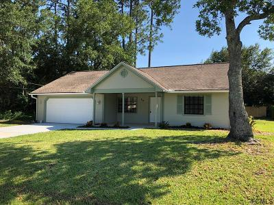 Palm Coast Single Family Home For Sale: 50 Brookside Lane