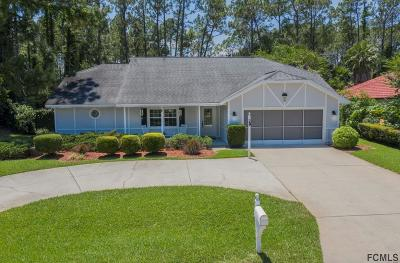 Palm Coast Single Family Home For Sale: 59 N Wedgewood Lane