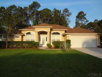 Palm Coast Single Family Home For Sale: 41 Botany Lane