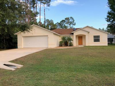 Palm Coast Single Family Home For Sale: 185 Point Pleasant Drive
