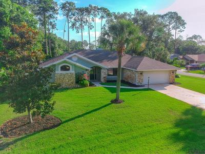 Palm Coast Single Family Home For Sale: 15 Wendover Lane