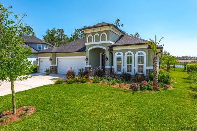 Palm Coast Single Family Home For Sale: 114 N Starling Dr
