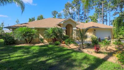 Palm Coast Single Family Home For Sale: 30 Bainbridge Ln