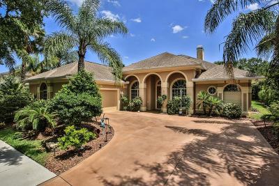 Palm Coast Single Family Home For Sale: 48 Eastlake Drive