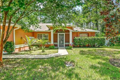 Palm Coast Single Family Home For Sale: 12 Ryapple Lane