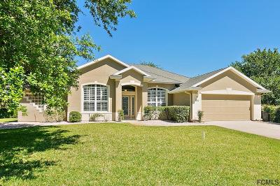 Ormond Beach Single Family Home For Sale: 101 Bay Lake Dr